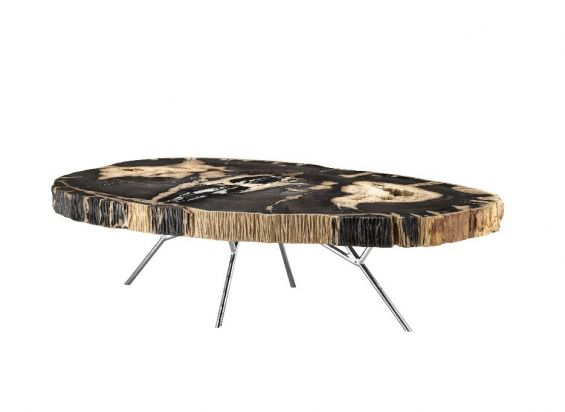 A stunning petrified wood coffee table with a stainless steel base