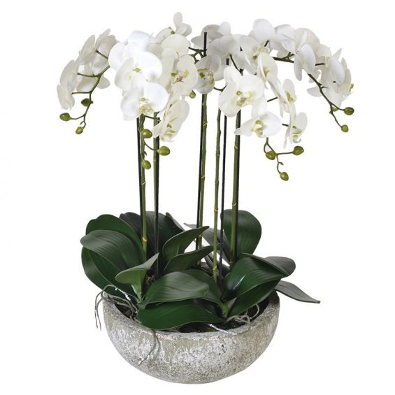 Artificial, multi-stemmed, medium sized potted orchid