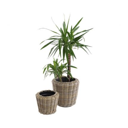 a luxurious natural rattan drypot with a recycled plastic planter