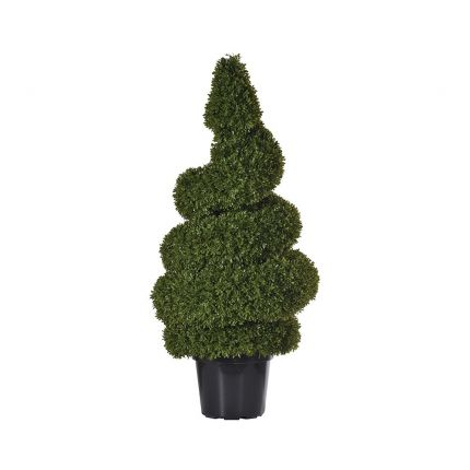 short outdoor spiral topiary
