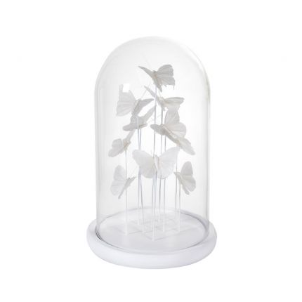A cluster of fabulous white butterflies enclosed in a clear glass dome